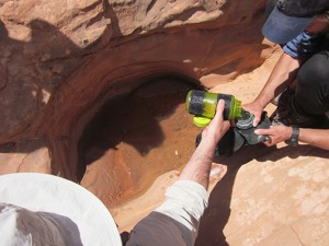 Drinking water from sandstone pothole